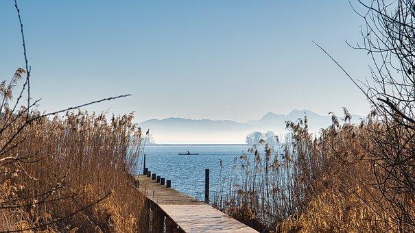 Lake, Jetty, Reed, Grass, Fog, Mist, Pier, Dock