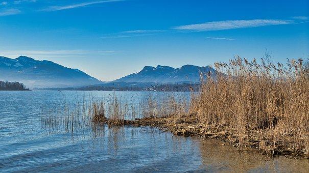 Lake, Reed, Mountains, Grass, Reflection, Water, Nature