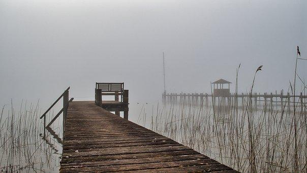 Pier, Lake, Fog, Reed, Grass, Bench, Seat, Jetty, Dock