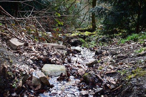 Stones, Water, Creek, Rocks, Rocky, Baldeneysee, Bach