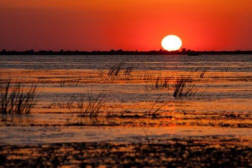 Sunset, Sun, River, Water, Grass, Silhouette, Sunlight