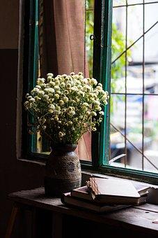 Flowers, Books, Window, Table, Flower Vase, Vase