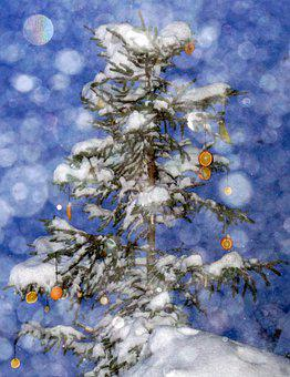 Winter, Christmas, Snow, Christmas Background
