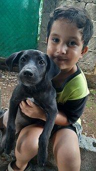 Kid, Boy, Animal, Dog, Portrait, Love, Young, Face
