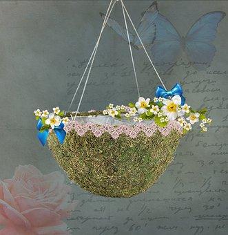 Digital Background, Baby, Hang, Hanging Plant, Swing