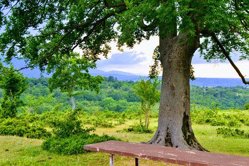 Georgia, Imereti, Landscape, Province