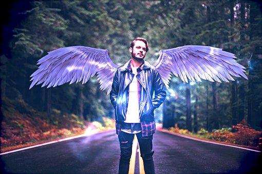 Man, Angel, Wings, Fantasy, Male, Model, Angel Wings
