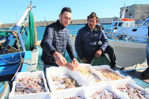 Fish, Fisherman, Sea, Man, Italy, Puglia, Monopoli