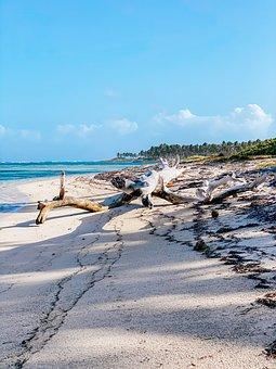 Landscape, Water, Silent, Nature, Travel, Beach, Sky