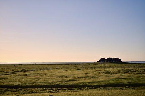 Hallig, Hooge, Terp, North Sea, Nordfriesland, Nature