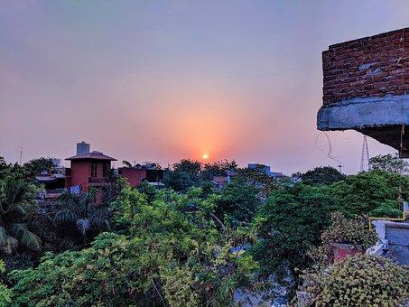 Sunset, Jungle, Landscape, Nature, Forest, India, Trees