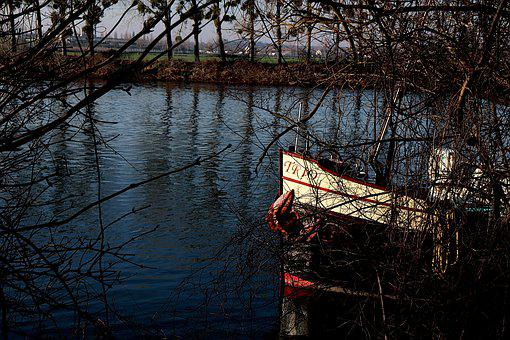 Boats, Branches, Trees, Transport, River Transport