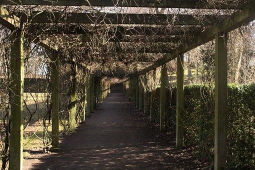Walkway, Outdoor, Yard