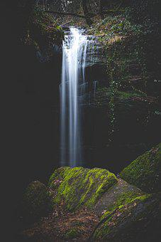Waterfall, Creek, Forest, Bach, Water, Nature