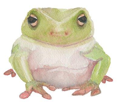 Frog, Watercolor, Art, Animal, Nature, Painting, Green