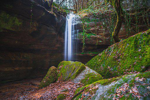 Waterfall, Water, Nature, Landscape, Bach, Wet, Forest