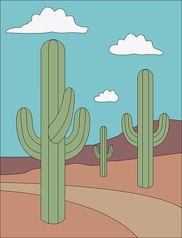 Cacti, Desert, Plants, Nature, Mexico, Prairie