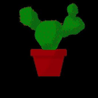 Cactus, Thorn, Green, Prickly, Plant, Nature, Desert