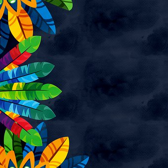 Feathers, Colorful, Border, Frame, Colorful Feathers
