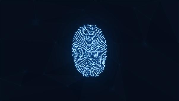 Fingerprint, Digital, Cybersecurity, Security, Data
