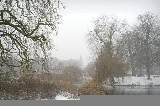 Winter, Snow, River, Trees, Bare Trees, Snowy, Wintry