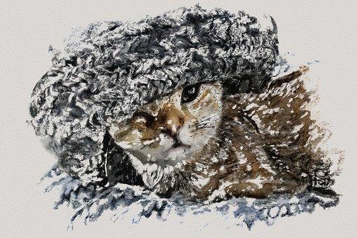 Cat, Kitten, Photo Art, Feline, Pet, Animal, Relaxed