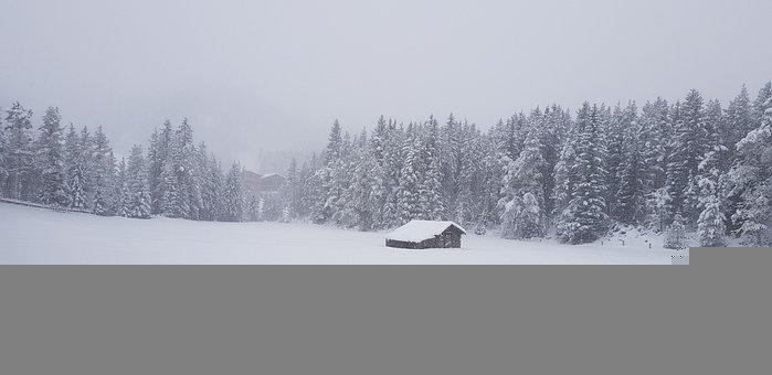 Hut, Trees, Snow, Winter, Fog, Mist, Cold, Cabin, Shed