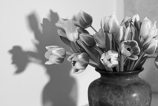 Tulips, Flower Vase, Black And White, Tulip Bouquet