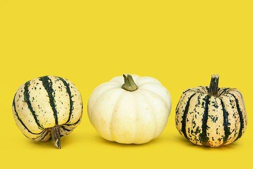 Gourds, Vegetable, Harvest, Squash, Autumn, Fall