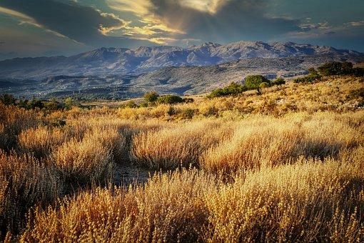 Field, Grass, Mountains, Dry, Autumn, Fall, Landscape