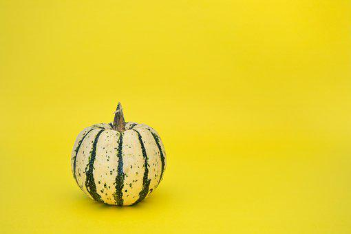 Gourd, Vegetable, Harvest, Produce, Organic, Food
