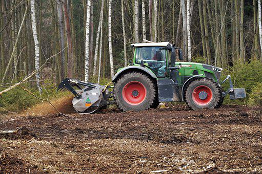 Tractor, Crusher, Forest, Heavy Equipment, Trees