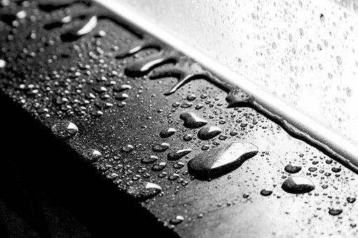 Water Drops, Wet, Monochrome, Droplets
