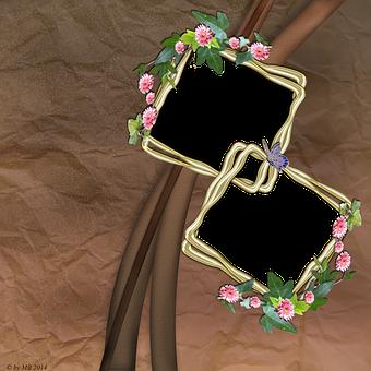 Frames, Flowers, Spring, Leaves, Gerbera, Brown