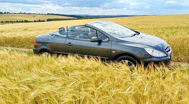 Convertible, Auto, Vehicle, Automobile, Summer