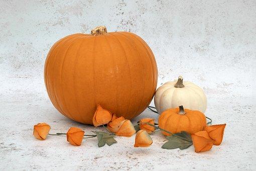 Pumpkin, Two, Small, Squash, Halloween, Autumn