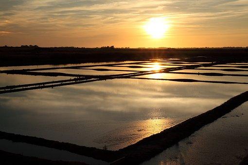 Salt Marshes, Sunset, Water, Wetlands, Fields