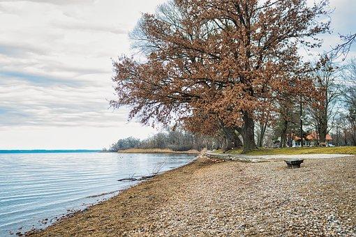 Lake, Bank, Fall, Autumn, Bench, Seat, Water, Coast