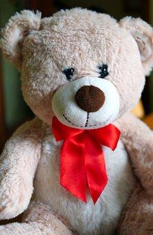 Teddy Bear, Bear, Toy, Stuffed Toy, Plush Toy