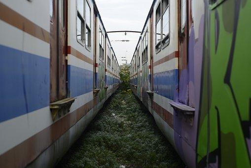 Train, Railway, Road, Rails, Travel, Tunnel