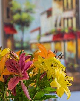 Lilies, Flowers, Bouquet, Petals, Bunch, Bloom, Blossom