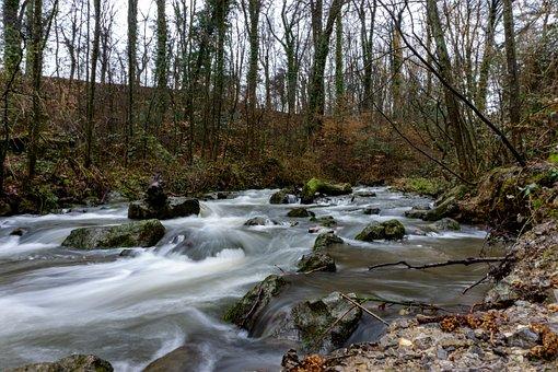Stream, Trees, Rocks, Brook, River, Flow, Flowing Water