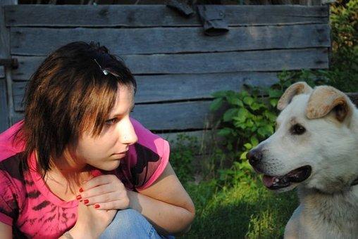 Girl, Dog, Pet, Friendship, Happy, Animal, Labrador