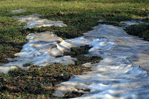 Grass, Snow, Ice, Frost, Melting, Wet, Cold, Nature