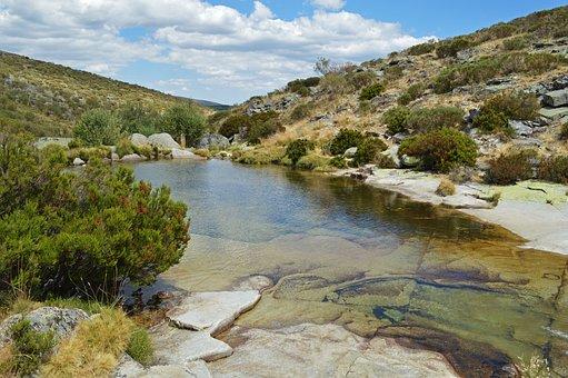 Trees, River, Vegetation, Hills, Region, Nature, Travel