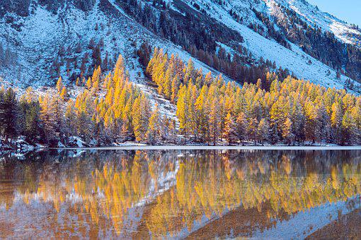 Lake, Trees, Snow, Reflection, Water, Mountain, Bank