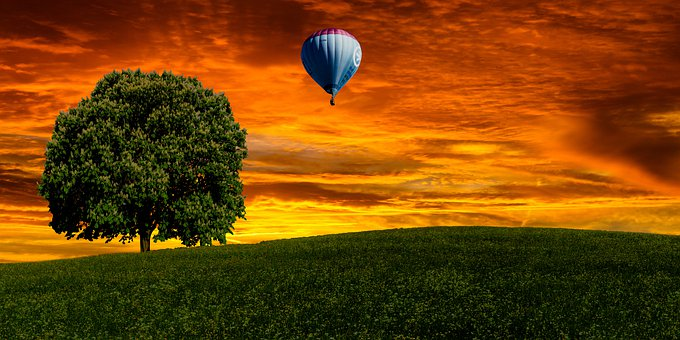 Hot Air Balloon, Sunset, Tree, Field, Dusk, Twilight