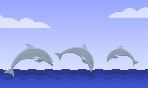 Dolphins, Sea, Ocean, Fish, Diving, Water, Waves