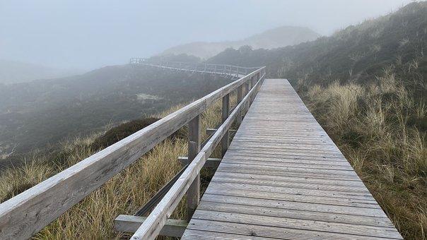 Boardwalk, Railings, Fog, Wooden Railings