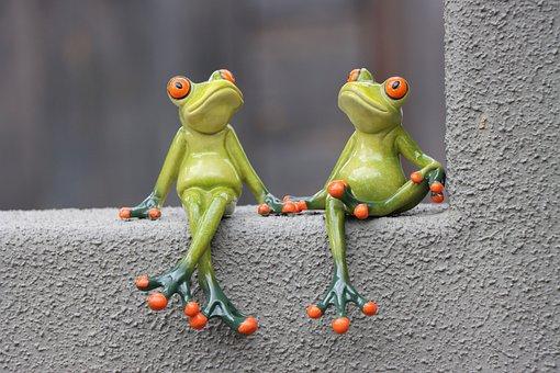 Frog, Green, Grey, Wall, Window, Funny, Animal, Fun